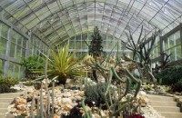 eka karya botanical garden